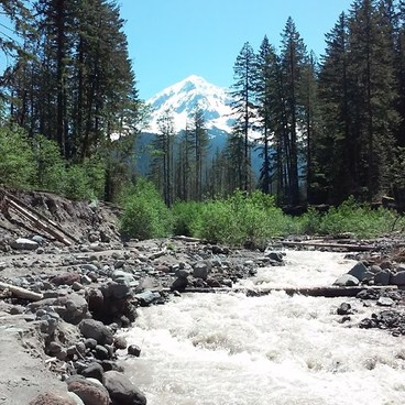 River/Mt Hood- Ramona Falls Hike