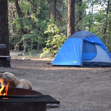 Site #5- Pineknot Campground