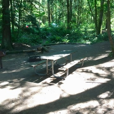 campsite 19 (Update 05/21/28: numbers have changed, this is now number 71)- Oxbow Regional Park Campground