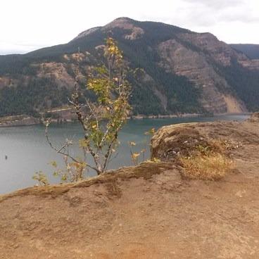 Columbia River view- Starvation Ridge Waterfall Loop Hike