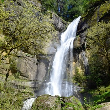 Golden + Silver Falls