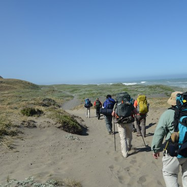 First mile or two in the dunes just above the water- The Lost Coast Trail
