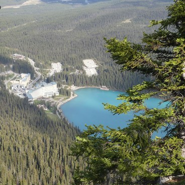 Lake Louise as seen from the top of Little Beehive- Lake Agnes + The Beehive Hike