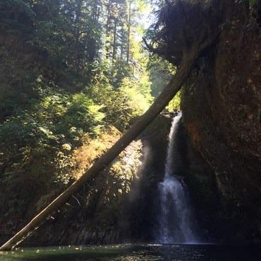 Lower Butte Creek Falls- Butte Creek Falls Hike