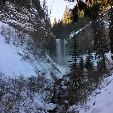 Tamanawas Falls from the trail- Tamanawas Falls Snowshoe