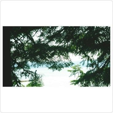 Fishin' - Timothy Lake, Meditation Point Campsites