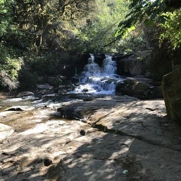 Alsea Falls Recreation Area