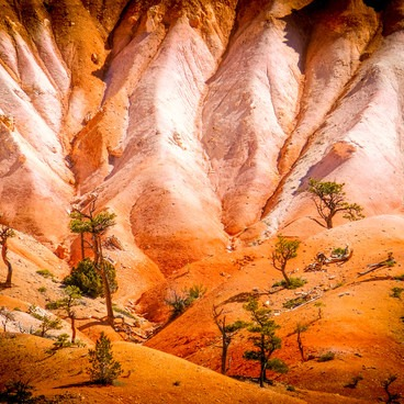 The color of Utah- Fairyland Loop