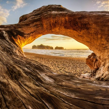 The view of Rialto Beach through a hole in a large driftwood tree.- Rialto Beach