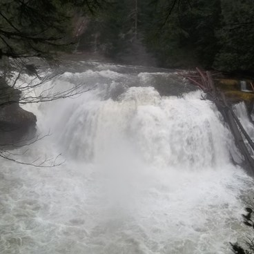 Taken on December 30, 2011.  The major snow for that winter did not come until January, so the river was high from rain up to that point.  - Lewis River Falls