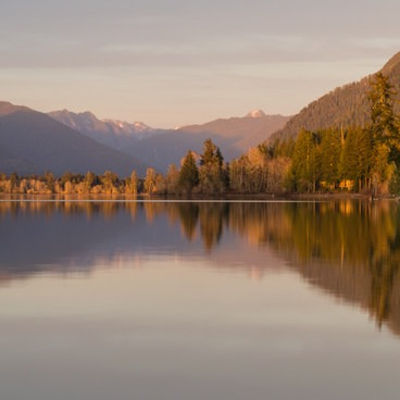 Lake Quinault, Willaby Campground