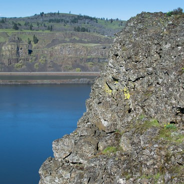 View of the Columbia River- Tom McCall Point Hike