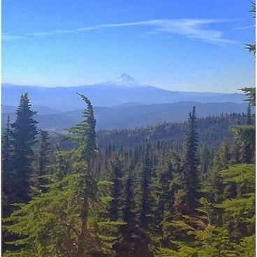 View of Mt. Hood from near Bird Creek Meadows- Bird Creek Meadows
