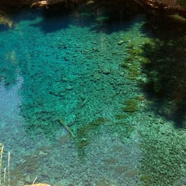 Tamolitch Blue Pool- McKenzie River Trail: Trail Bridge to Tamolitch Pool
