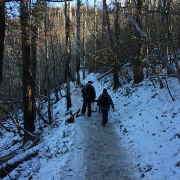 Slippery Slope- Angels Rest + Foxglove Way Hike