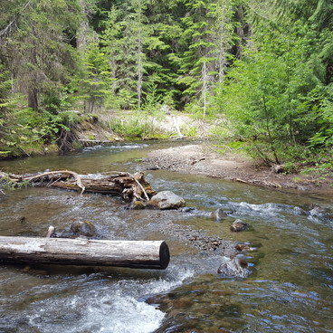 Our normal site- Barlow Crossing Campground + Campsites