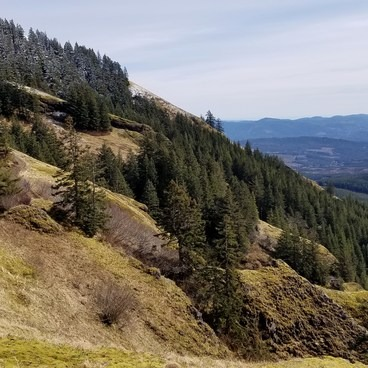Midway up- Saddle Mountain