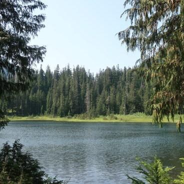 Lake Elizabeth- Lake Elizabeth