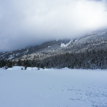 Gold Creek Pond Loop