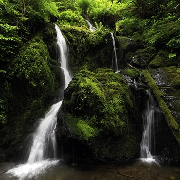 Cascade Falls- Merriman Falls
