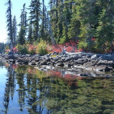 Fall colors at Waldo Lake- Waldo Lake