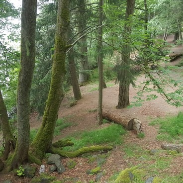 Midway Sites 18 & 19- Orcas Island: Moran State Park Campgrounds
