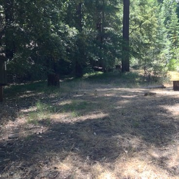Campsite #123. Smallish and sloped. #126 is much, much better, and totally in the shade.- Richardson Grove State Park