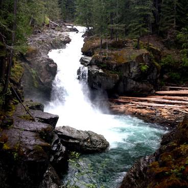 Silverfalls- Silver Falls and Hot Springs Loop Trail