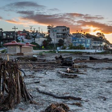 Driftwood sculptures at Rio Del Mar- Rio Del Mar State Beach