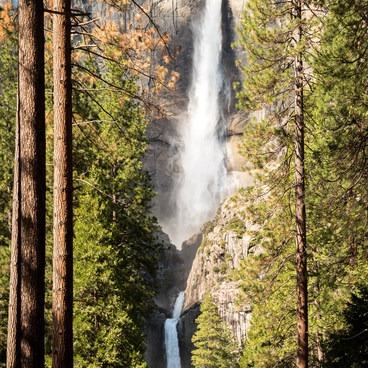 Upper and Lower Yosemite Falls in a season of high flow.- Lower Yosemite Falls