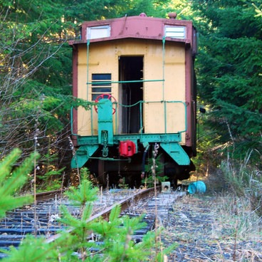 Abandoned train along the wrong trail tracks.- Upper Salmonberry River Trail