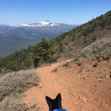 Black Butte Hike