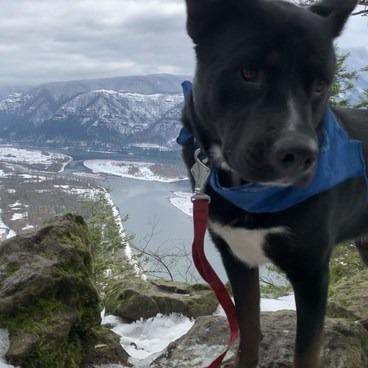 Beacon Rock Hike