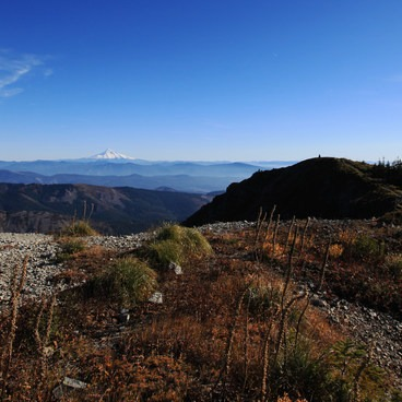 View to Mount Hood from Silver Star Summit- Silver Star Mountain via Ed's Trail + Silver Star Trail
