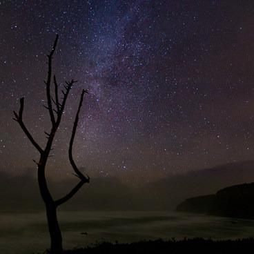 Stars over Short Beach- Short Beach