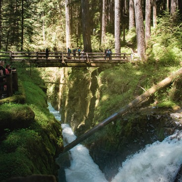 View of the bridge- Sol Duc Falls