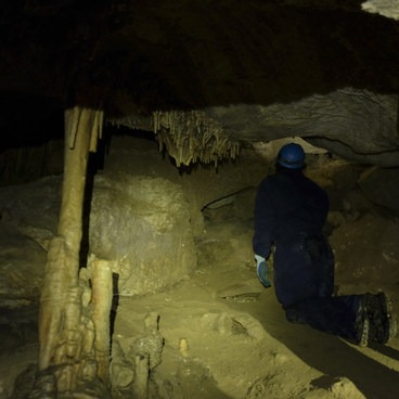 Wild cave tours are only on Sundays and Tuesdays from mid-June through mid-August.- Lewis and Clark Caverns