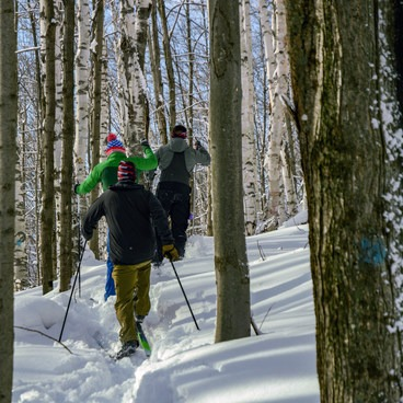 Off-piste skiing.- Trapp Family Lodge Cross-country Ski Center