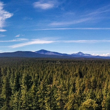 Peterson Ridge Pano- Peterson Ridge Trail System