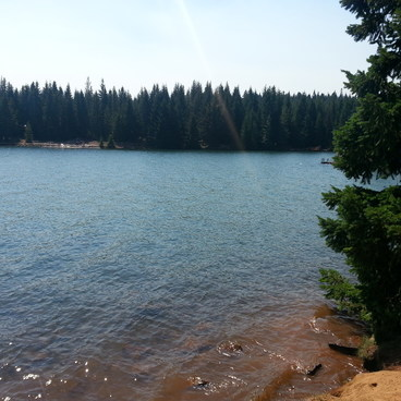 Timothy Lake, Meditation Point Campsites
