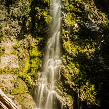 Wildcat Falls- Siouxon Creek Hike