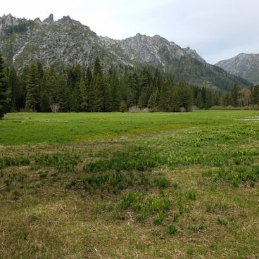 Morris Meadow (bear scat all over here)- Emerald + Sapphire Lakes