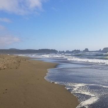 Shi Shi Beach Hike