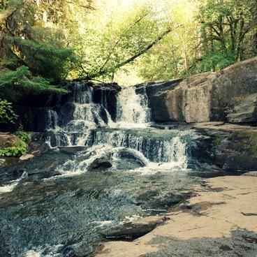 Alsea Falls- Alsea Falls Recreation Area