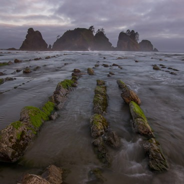 These striations are visible at mid-low tide- Point of the Arches via Shi Shi Beach
