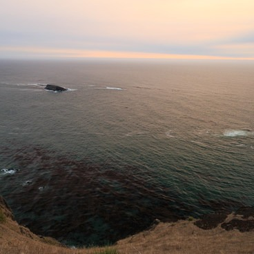 High above the Pacific- Otter Crest State Scenic Viewpoint