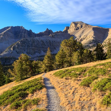 Early morning light on the Wheeler Peak trail - Wheeler Peak