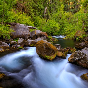 The Umpqua River above Toketee Falls- Toketee Falls