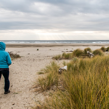 A short walk through the dunes to the beach- Brian Booth State Park