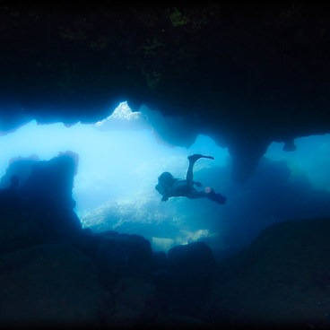 Underwater swim-throughs for freedivers.- Sharks Cove